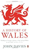 img - for A History of Wales book / textbook / text book