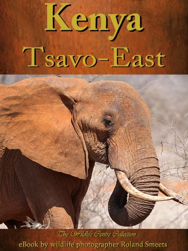 Photo eBook Tsavo East (The Wildlife Centre eBook Collection)