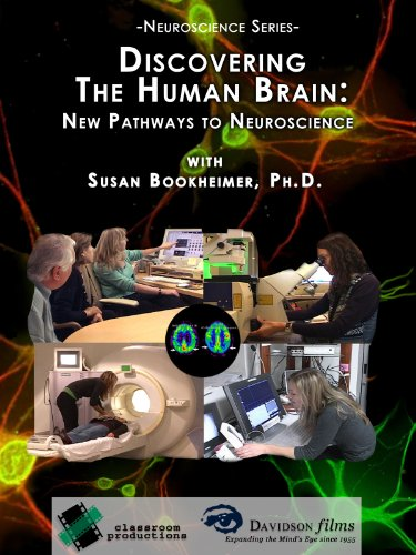 Discovering The Human Brain: New Pathways To Neuroscience