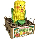Grow Your Own Herbs Parsley in a Corn Head Garden Kit