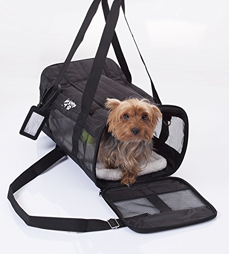 2pet cabin travel under seat kennel approved by major for Air travel with dog in cabin