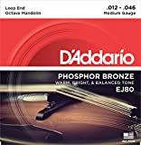 D'Addario ダダリオ オクターブマンドリン弦 フォスファーブロンズ Medium .012-.046 EJ80 【国内正規品】
