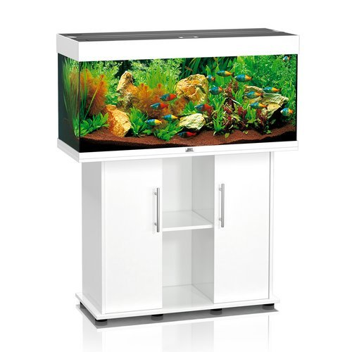 JUWEL AQUARIEN Aquarium Set &#187;Rio&#171;