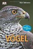 Vögel in Europa, m. 1 Audio: Über 500 Arten - Mit Vogelstimmen-CD