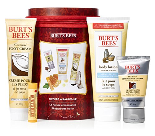 burts-bees-nature-wrapped-up-4-piece-gift-set