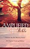 The Amplified Bible (0310951682) by Not Available (NA)