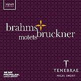 Brahms/Bruckner: Motets
