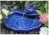 Smart Solar 21372R01 Ceramic Solar Koi Fountain, Blue Glazed Finish