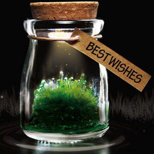Diy Growing Grow Crystal Bottle Jar Powder Led Mood Light Lamp Wishing Wish Green front-164052