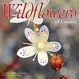 Wildflowers of Canada Mini Wall Calendar 2015