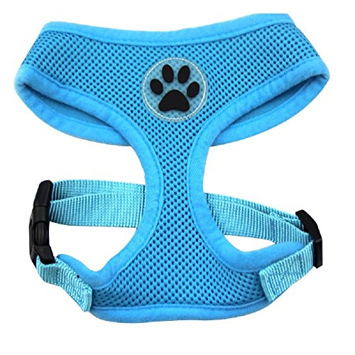 BINGPET BB5001 Soft Mesh Dog Harness Pet Walking Vest Puppy Padded Harnesses Adjustable , Blue Medium (Wonder Walker Harness compare prices)