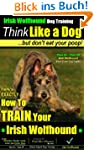 Irish Wolfhound dog Training | Think...