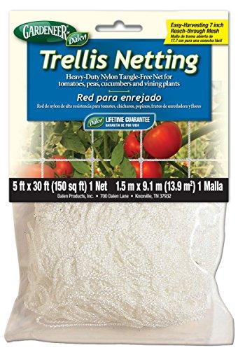 Gardeneer By Dalen Trellis Netting Heavy-Duty Nylon Tangle-Free Net 5' x 30' (Tomato Netting compare prices)
