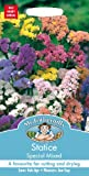 Mr Fothergills - Pictorial Packet - Flower - Statice Special Mixed - 100 Seeds