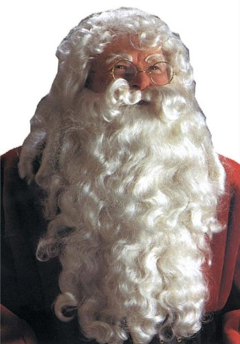 Costumes For All Occasions Ca26 Santa Wig And Beard Dlx