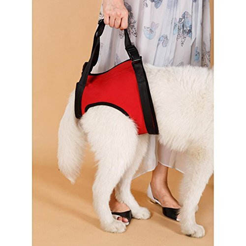 lalawow-dogs-rear-lift-harness-dogs-lift-support-rehabilitation-harness-helping-support-for-elderly-