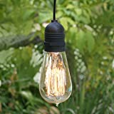 Fantado Single Socket Black Commercial Grade Outdoor Pendant Light Lamp Cord, 11FT, UL Listed by PaperLanternStore
