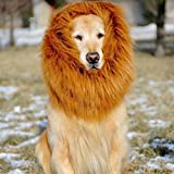 Aaronam Pet Costume Lion Mane Wig For Dog Halloween Festival by Aaronam [並行輸入品]