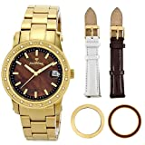 "JBW Women's JB-6224-F_BB ""Starlight""Gold Diamond Mother-Of-Pearl 18K Gold Plated Stainless Steel Gift Set Watch"