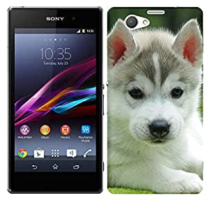 Wow Premium Design Back Cover Case For Sony Xperia Z1