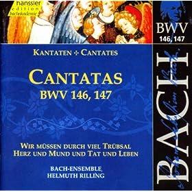 Wir mussen durch viel Trubsal, BWV 146: Aria: Wie will ich mich freuen (Tenor, Bass)