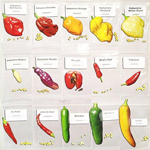 150-samen-die-15-sorten-von-chili-beliebtesten-in-mexiko-kollektion-mexikanische-habanero-red-savina
