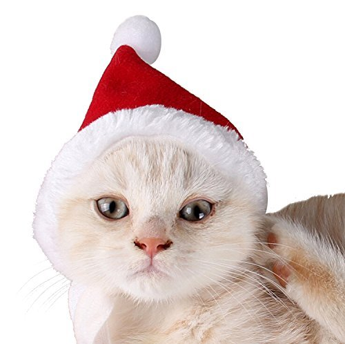 [Pet Leso Cat Christmas Hat With Muffler Puppy Dog Santa Hat, Red -S] (Costumes For A Cat)