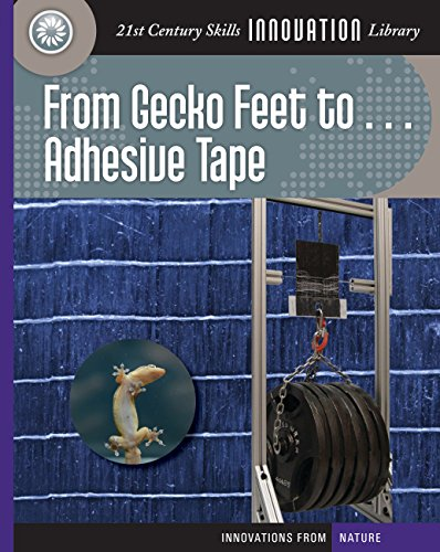 from-gecko-feet-to-adhesive-tape