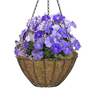 CobraCo Hunter Green 12-Inch Growers Style Hanging Basket HGB12-HG