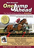 One Jump Ahead: The Top National Hunt Horses to Follow for 2012/2013
