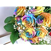 虹色のバラ!お祝いに!和風のラッピングでお届け レインボーローズの花束 バラの花束 80本 生花