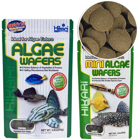 Tropical Algae Wafers Fish Food, 2.2 Lbs