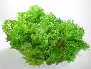 リーフレタス ミックス220gお試しセット 洗わなくていい野菜 無農薬 植物工場
