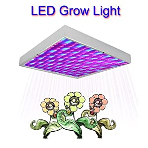 Cheap led grow lights uk
