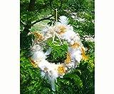 Songbird Essentials SEWF91008 Wild Bird Nesting Material Wreath and SEWF91008R Wild Bird Nesting Wreath Refill bundle
