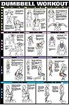 Dumbbell Workout Ii 24 X 36 Laminated Chart Shoulder Back