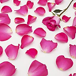 Farm Fresh Natural Hot Pink Rose Petals - 3000 petals