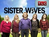 Sister Wives: Meet Kody & the Wives
