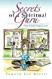 img - for Secrets of a Spiritual Guru: Real Estate, Yoga & Lies (Guru 1) book / textbook / text book