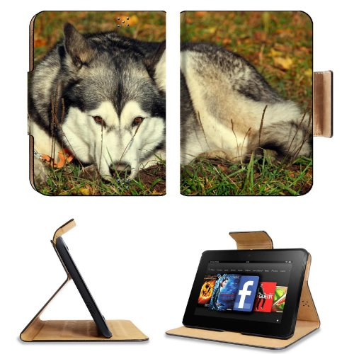 Dog Husky Grass Lie Down Waiting Sadness Amazon Kindle Fire Hd 7 [2012 Version Only September 14, 2012] Flip Case Stand Magnetic Cover Open Ports Customized Made To Order Support Ready Premium Deluxe Pu Leather 7 11/16 Inch (195Mm) X 5 11/16 Inch (145Mm) front-746538
