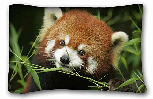 Soft Pillow Case Cover ( Animal Red Panda ) Pillow Covers Bedding Accessories Size 20