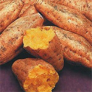 完熟 種子島安納芋 Mサイズ4キロ 安納紅