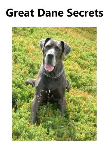 Free Kindle Book : Great Dane Secrets: How to Raise Happy and Healthy Great Danes