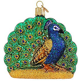 Old World Christmas Glass Ornament Proud Peacock