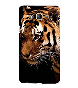 printtech Nature Tiger Design Back Case Cover for Samsung Galaxy On5