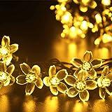 (リーダーテク)lederTEK ソーラー 防雨防水型 電球色 桃花形電飾 イルミネーション LED 6.4m 50球 2点滅モデル クリスマス ライト 飾り付け