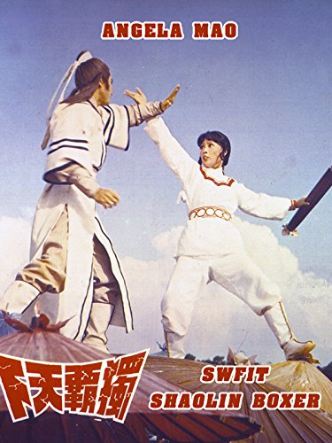 Swift Shaolin Boxer