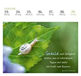 Image de 365 Tage Gelassenheit 2017: Postkartenkalender