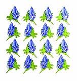 Jolee's Boutique Repeats Dimensional Stickers, Bluebonnet