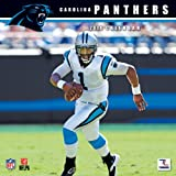 Turner Perfect Timing Carolina Panthers 2014 Mini Wall Calendar (8040401) at Amazon.com